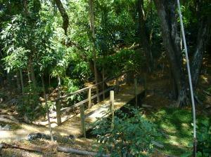 UQ pathway