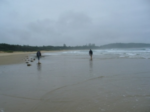 Sawtell beach walk