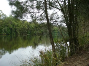 Bonville Creek