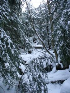 Frozen waterfall & stream