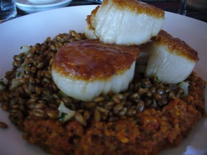 Scallops with pepper romesco & farro